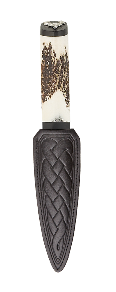 Scottish Staghorn Stag Sgian Dubh Blackwood